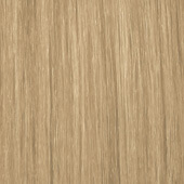 palette_com_natural_baseline_natural_color_light_blonde_to_medium_blonde_170x170